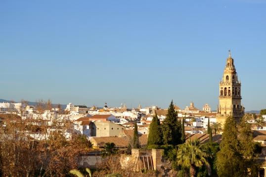 Andalucía 294