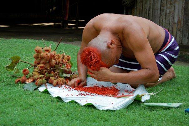 seeds bua hair tsachila
