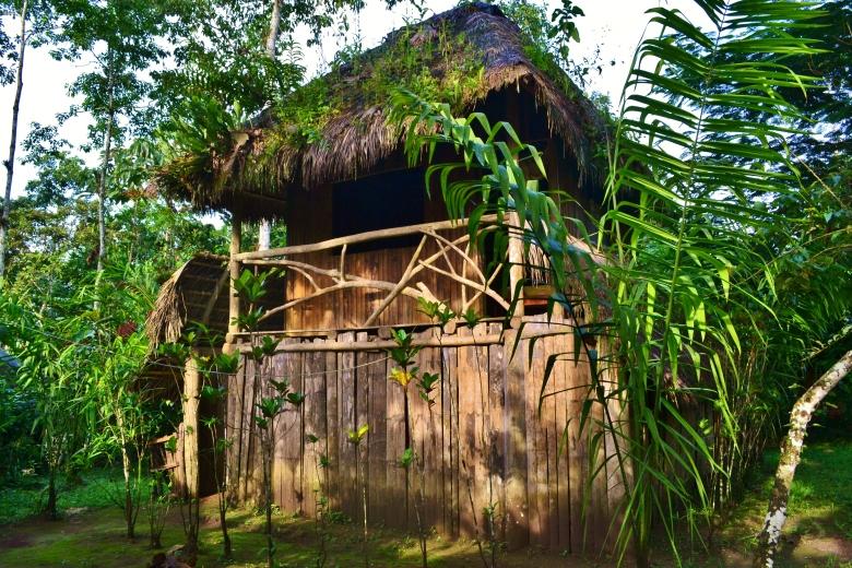 Tsachila house bua casa tipica