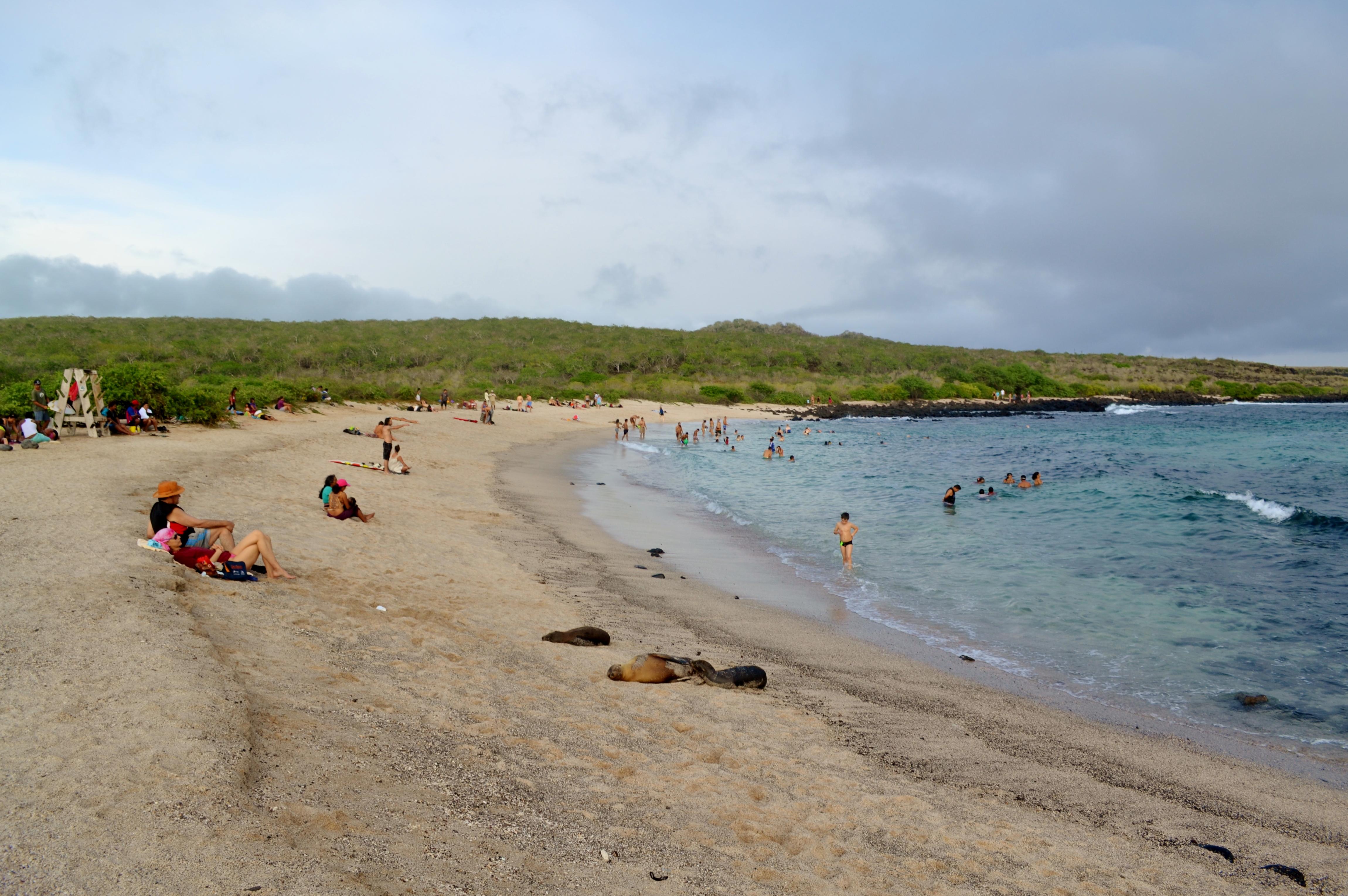 Islas de Galapagos La Loberia
