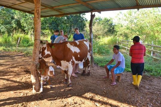 Islas de Galapagos farm hacienda