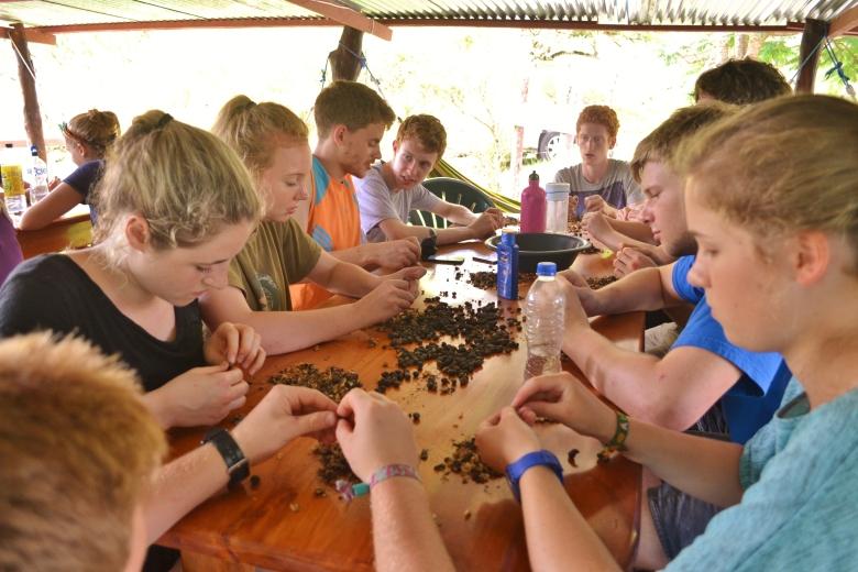 Coffee beans hacienda tranquila