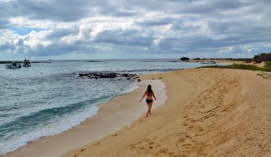 Islas de Galapagos Manglecito San Cristobal Playa