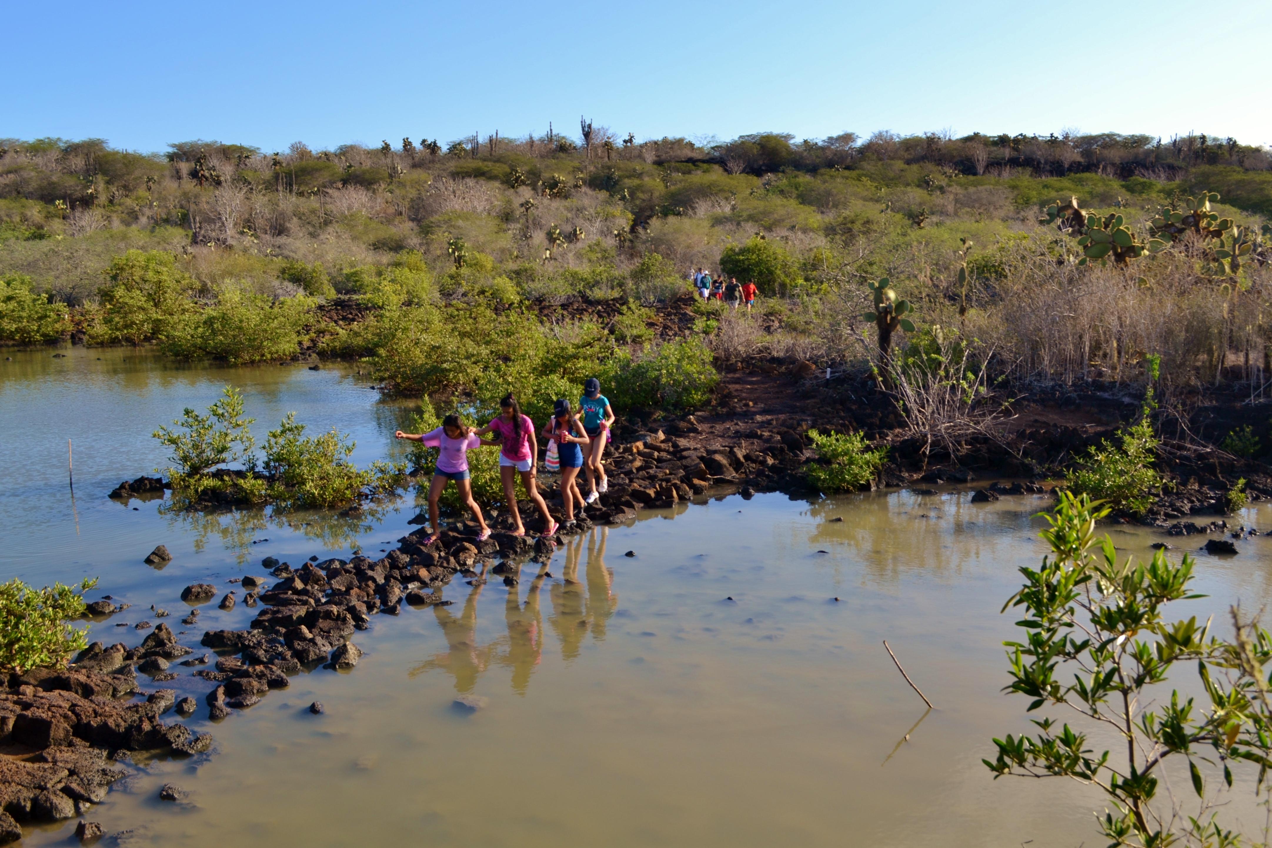 Islas de Galapagos las grietas