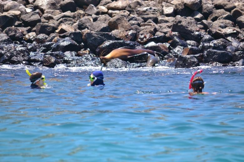 Islas de Galapagos santa fe snorkel