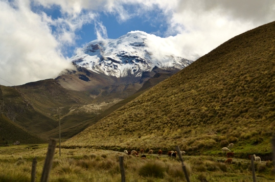Adventure Week chimborazo