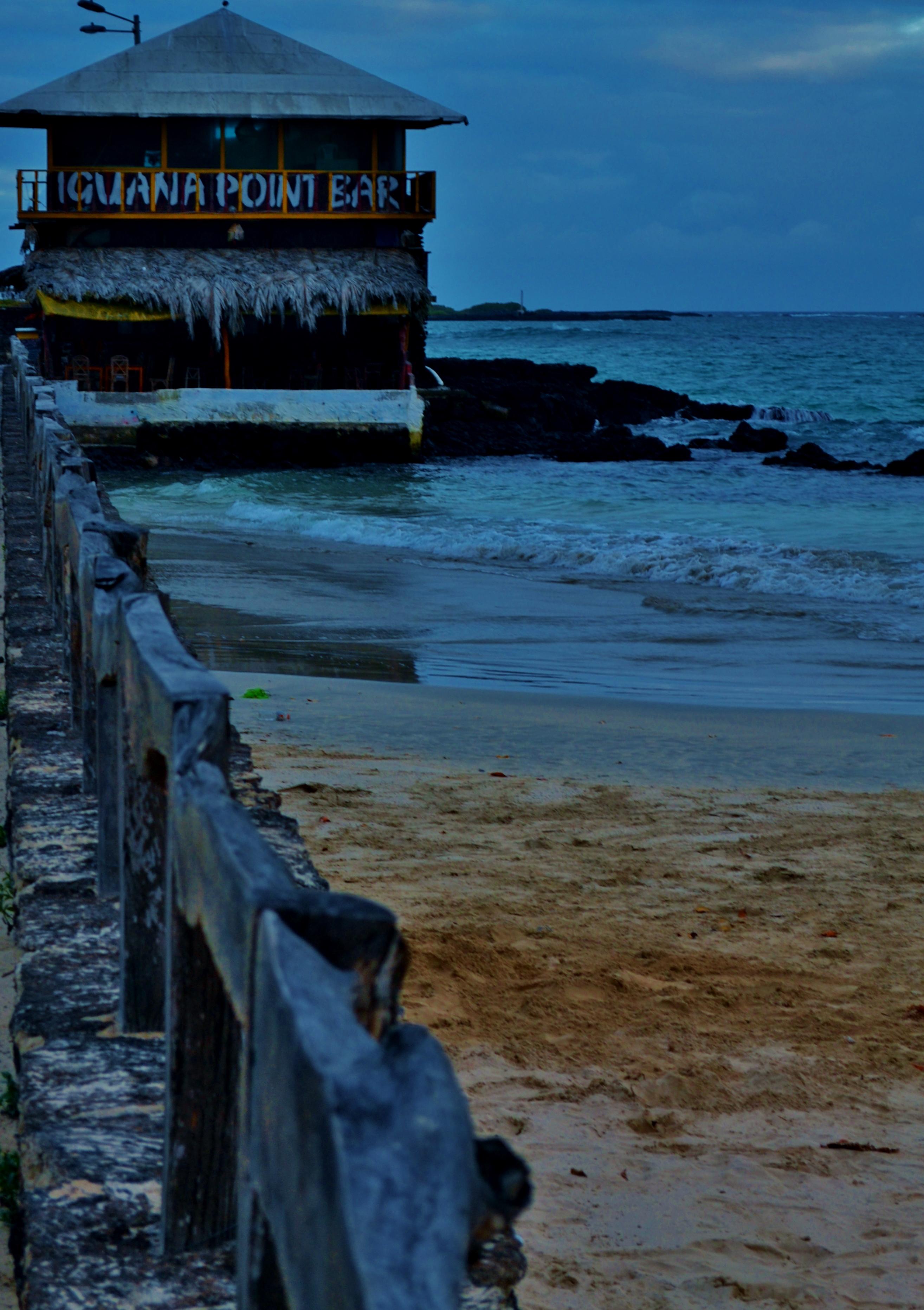 Islas de Galapagos isabela iguana bar