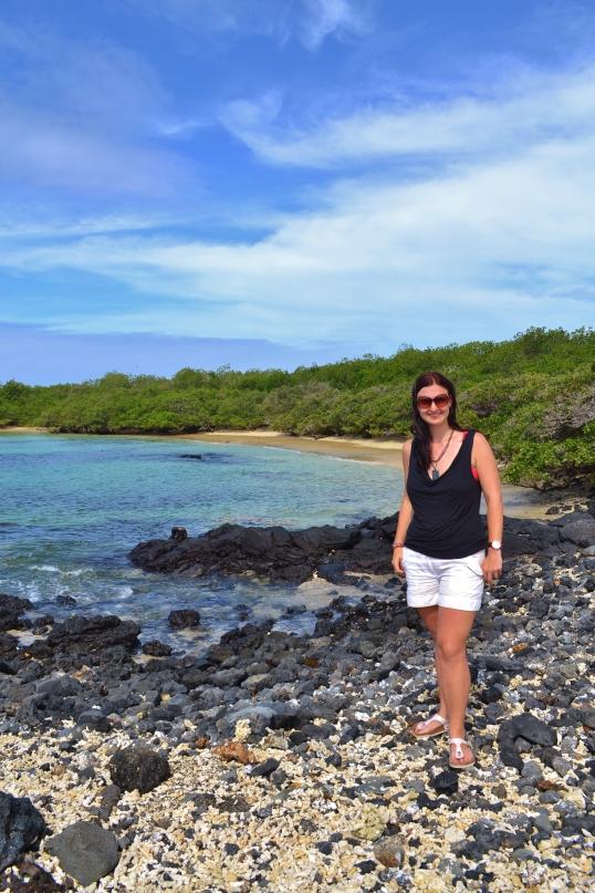 Islas de Galapagos las tintoreras