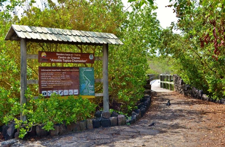 Islas de Galapagos turtle project