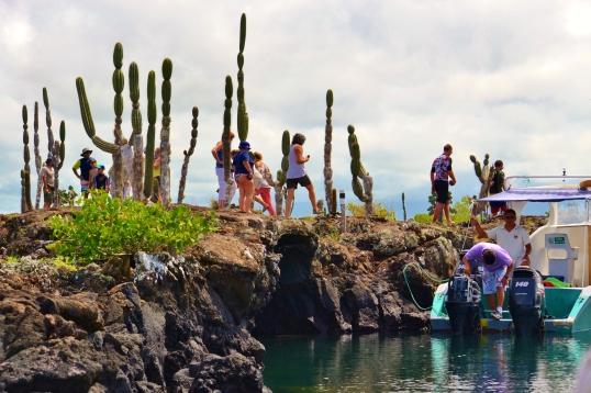 Islas de Galapagos los tuneles