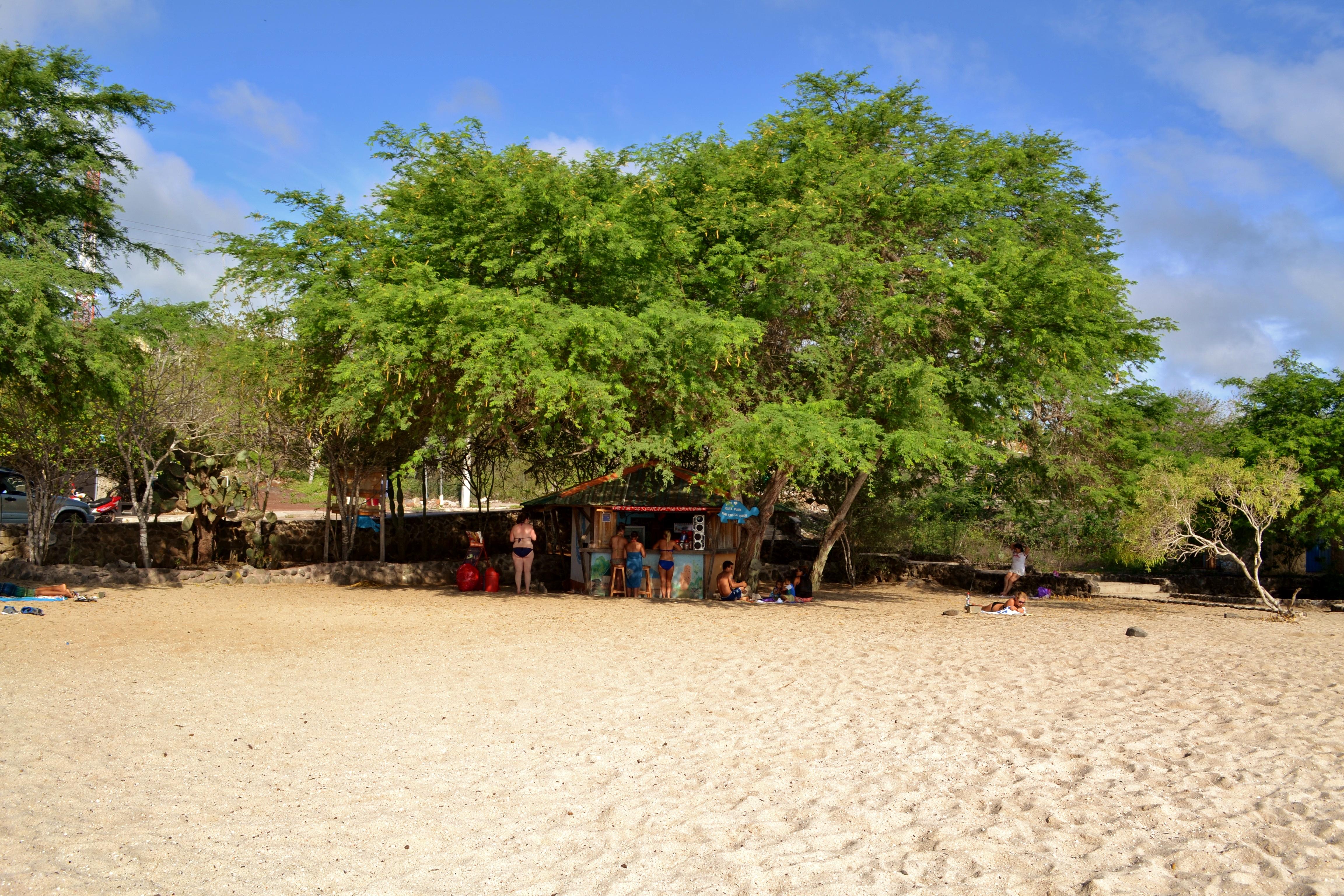 Islas de Galapagos playa mann